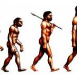 "dieta Paleo: i ""supercibi"" che non dovete perdere"