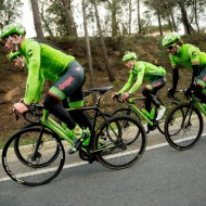 cannondale-team-disc-brakes